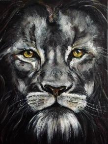 5 Lions Eyes
