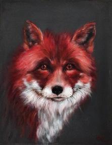 Red fox 2019